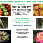 Do it Yourself Fruit Tree or Rose Bush!