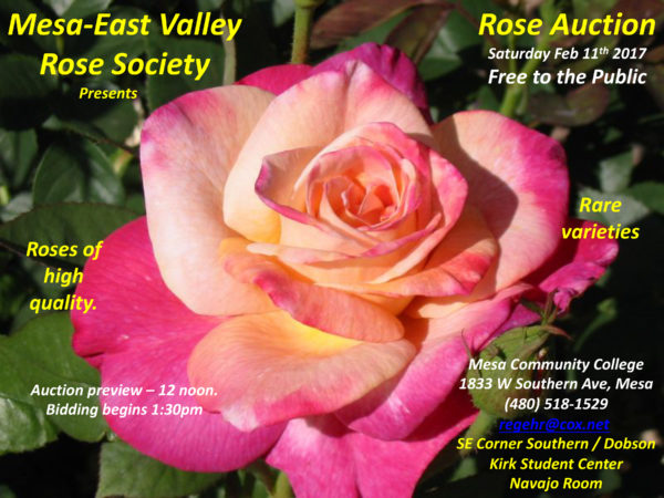 Rose Auction Feb 11 2017